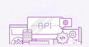 SMS API Developers